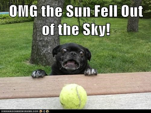 OMG the Sun Fell Out of the Sky!
