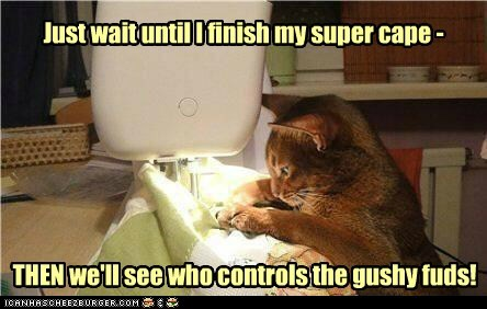 super kitteh has a plan