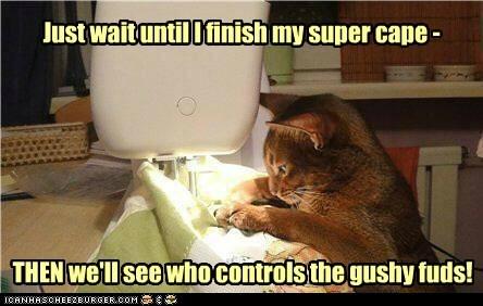 super kitteh has a plan