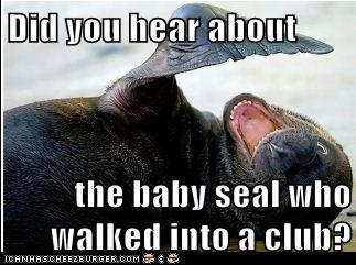 Did you hear about  the baby seal who walked into a club?
