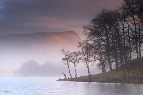 mysterious,landscape,pretty colors,lake,fog