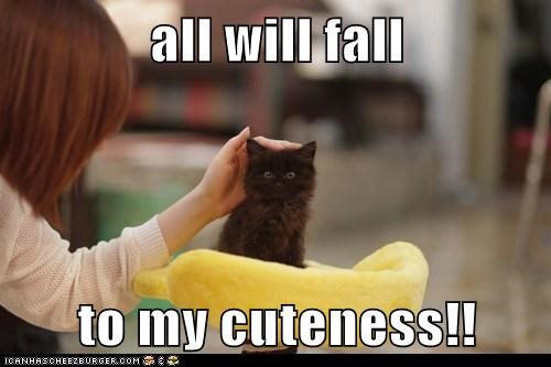 all will fall  to my cuteness!!