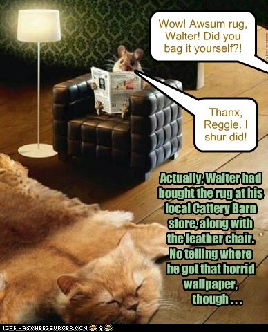 Walter better hope Reggie doesn't make it down to Cattery Barn while that rug is still in stock...