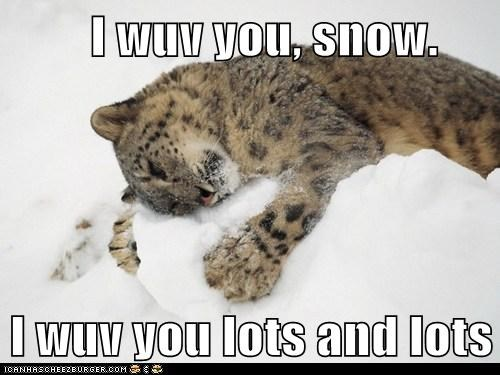 I wuv you, snow.  I wuv you lots and lots