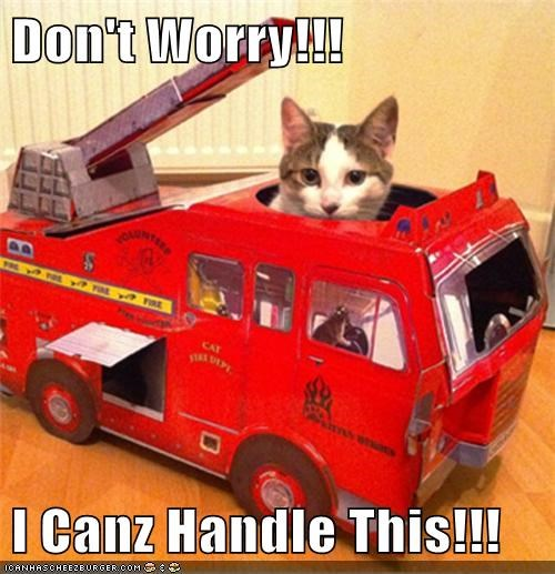 Don't Worry!!!  I Canz Handle This!!!