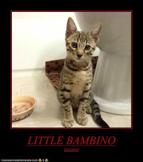 LITTLE BAMBINO