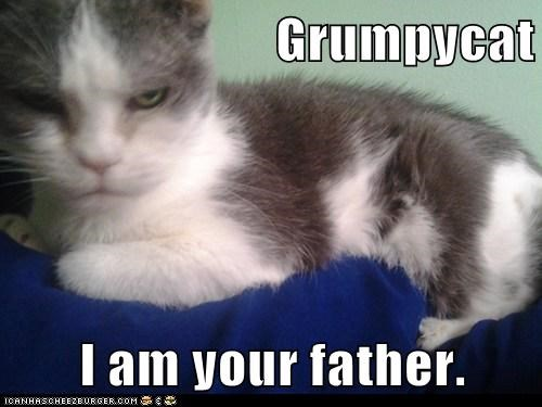 Grumpycat  I am your father.