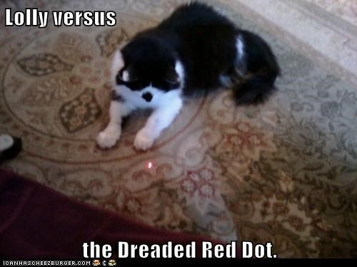 Lolly versus  the Dreaded Red Dot.