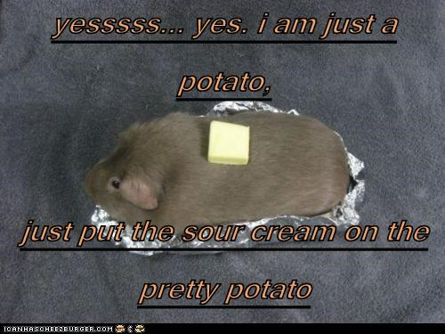 yesssss... yes. i am just a potato,   just put the sour cream on the pretty potato