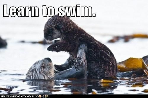 Learn to swim.