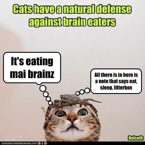 It's eating mai brainz