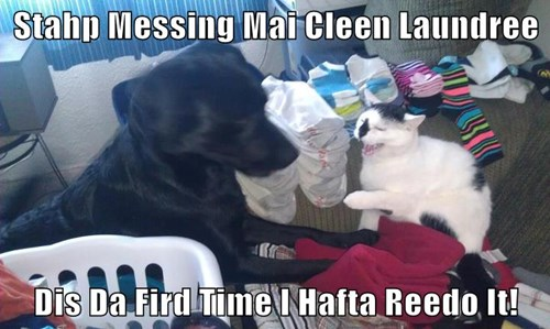 Stahp Messing Mai Cleen Laundree