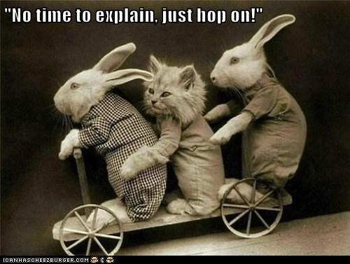 """No time to explain, just hop on!"""