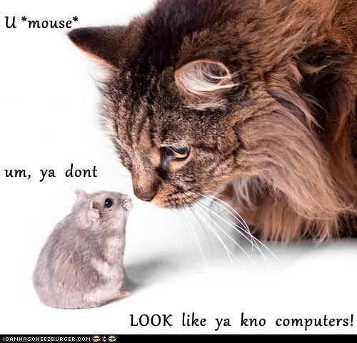 U *mouse* um,  ya  dont LOOK  like  ya  kno  computers!