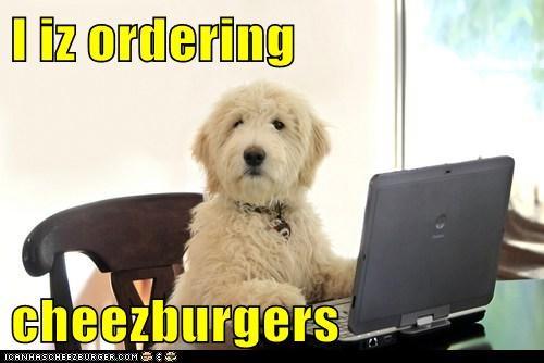 I iz ordering  cheezburgers