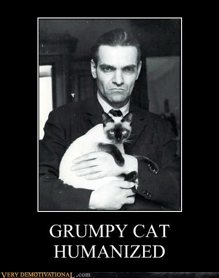 Grumpy Cat Transformed!