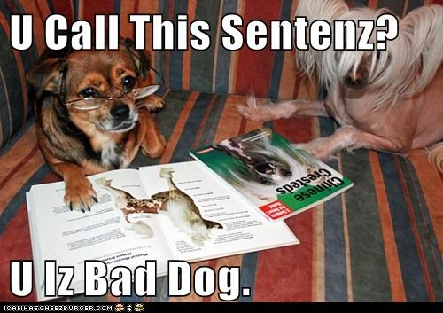 U Call This Sentenz?  U Iz Bad Dog.