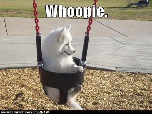 Whoopie.