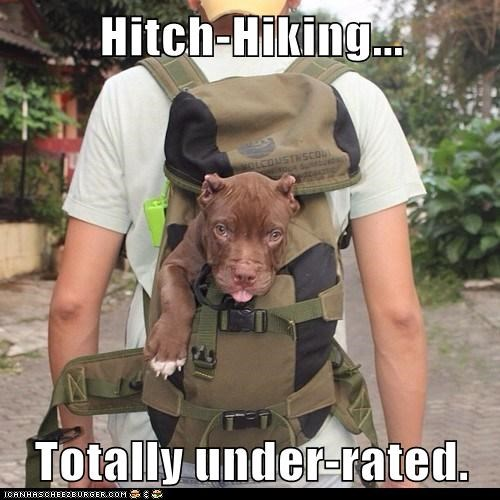 Hitch-Hiking...  Totally under-rated.