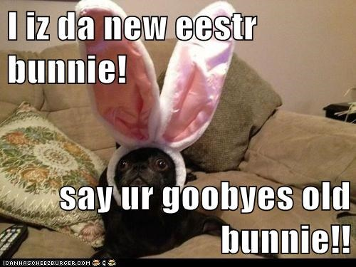 I iz da new eestr bunnie!  say ur goobyes old bunnie!!