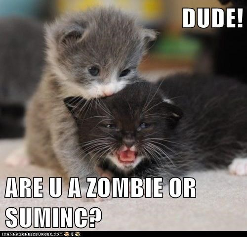 DUDE!  ARE U A ZOMBIE OR SUMINC?