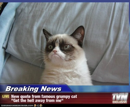 "Breaking News - New quote from famous grumpy cat  ""Get the hell away from me"""