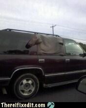 car window,sleeves,sweater,shirt,window