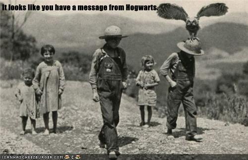 Harry Potter,message,Owl,mail,Hogwarts