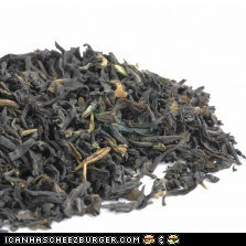 A collection of second flush darjeeling teas