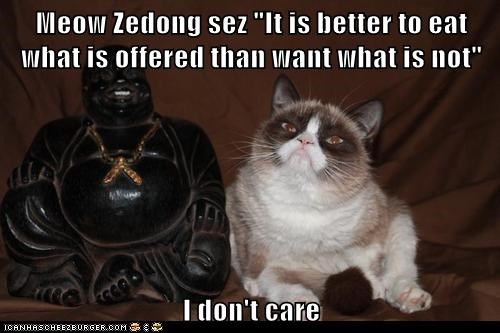 "Meow Zedong sez ""It is better to eat what is offered than want what is not""  I don't care"