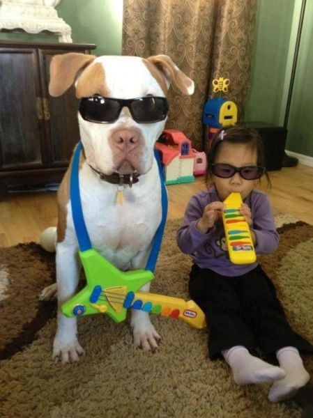 baby,dogs,musicians