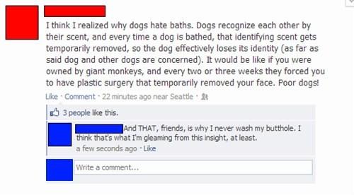 dogs,dog bath,pheromones