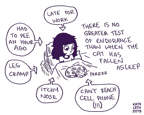 cramp,lap,itch,move,cat people,pee,asleep,problems,comic,Cats