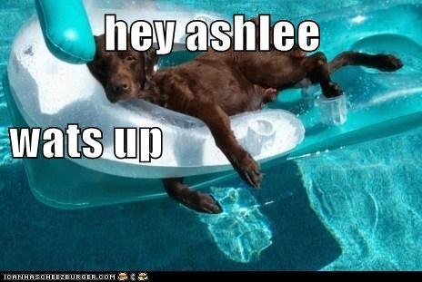 hey ashlee  wats up