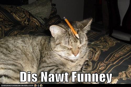 Dis Nawt Funney
