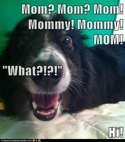 "Mom? Mom? Mom! Mommy! Mommy! MOM! ""What?!?!"" Hi!"