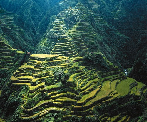 Terraced Hills in the Philippines
