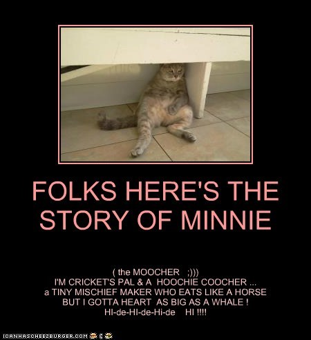 FOLKS HERE'S THE STORY OF MINNIE
