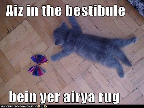 Aiz in the bestibule    bein yer airya rug