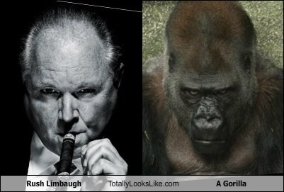 Rush Limbaugh Totally Looks Like A Gorilla