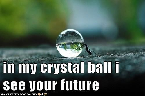 in my crystal ball i see your future