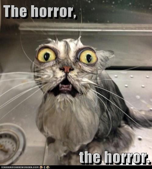 The horror,  the horror.