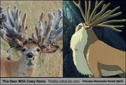 TLL,horns,forest spirit,deer,princess mononoke