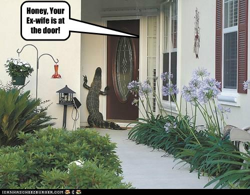 Honey, Your Ex-wife is at the door!