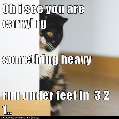 Oh i see you are carrying  something heavy run under feet in  3 2 1..