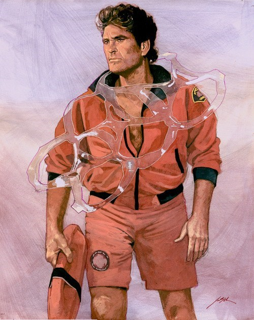 art,actor,david hasselhoff,Baywatch,funny