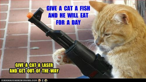 GIVE  A  CAT  A  FISH AND  HE  WILL  EAT FOR  A  DAY