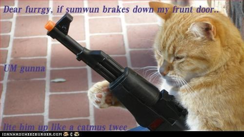 Dear furrgy, if sumwun brakes down my frunt door.. UM gunna lite him up like a catmus twee