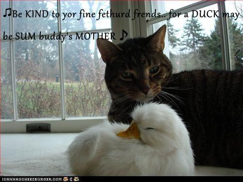 ♫Be KIND to yor fine fethurd frends.. for a DUCK may be SUM buddy's MOTHER♪..