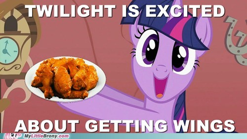 Gave Twilight Some Wings, Twilight Loves Wings